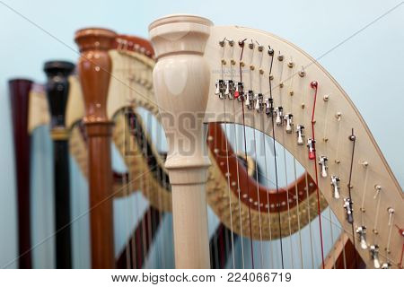 ST. PETERSBURG, RUSSIA - AUGUST 8, 2017: Harps produced by Resonance Harps enterprise. The company revives the production of harps of the Lunacharsky factory founded in 1947