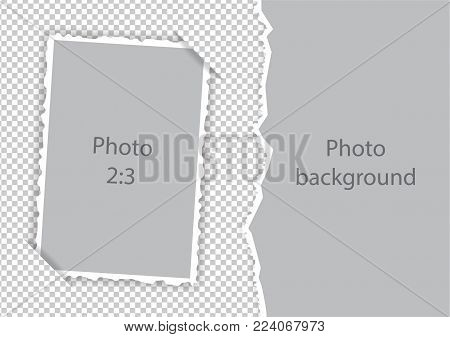 Torn edges paper photoframe modern template collage. Vector illustration.
