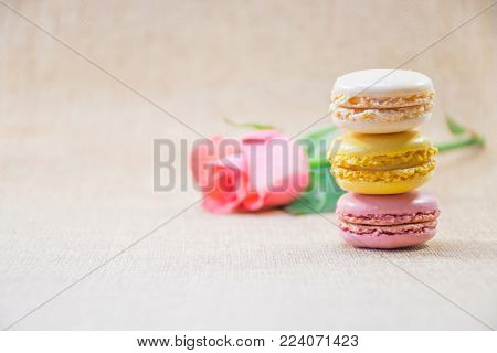 Sweet macaron in cream,yellow and pink violet put overlap with background blurry branch of sweet pink rose and background clear brown, delicious french's biscuite, sweet scene for valentine's day