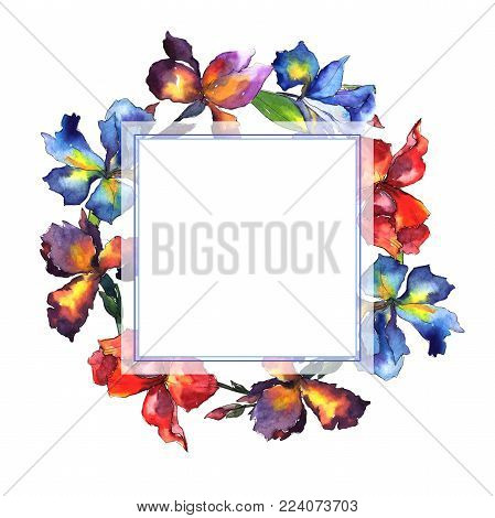 Wildflower iris flower wreath in a watercolor style. Full name of the plant: iris. Aquarelle wild flower for background, texture, wrapper pattern, frame or border.