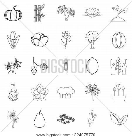 Alive world icons set. Outline set of 25 alive world vector icons for web isolated on white background