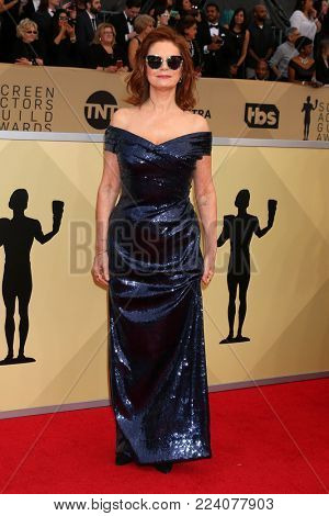 LOS ANGELES - JAN 21:  Susan Sarandon at the 24th Screen Actors Guild Awards - Press Room at Shrine Auditorium on January 21, 2018 in Los Angeles, CA