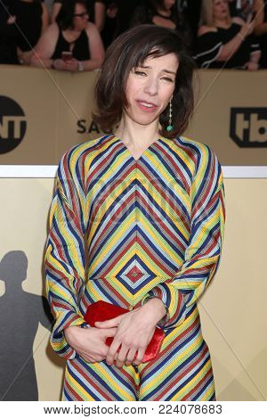LOS ANGELES - JAN 21:  Sally Hawkins at the 24th Screen Actors Guild Awards - Press Room at Shrine Auditorium on January 21, 2018 in Los Angeles, CA