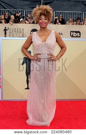 LOS ANGELES - JAN 21:  Tanika Ray at the 24th Screen Actors Guild Awards - Press Room at Shrine Auditorium on January 21, 2018 in Los Angeles, CA