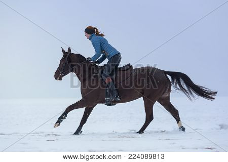 Young woman riding horse at winter day