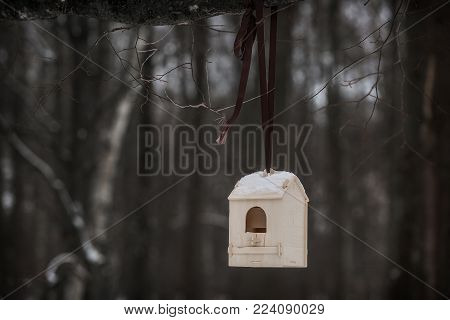 homemade birdhouse in a park at winter day