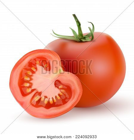 3d realistic Tomato and slice isolated on on white background vector illustration. Realistic fresh juicy tomato with green twig and slice on white background