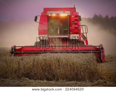 Night shot from harvest of wheat. Combine harvester working on a field.