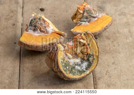 Moldy pumpkin on the old wooden table
