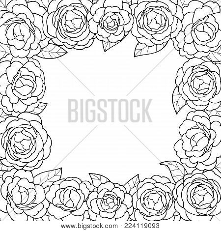 Camellia black outline square frame on white background. Floral romantic pattern with text place for mock ups, invitation, greeting cards, valentines and coloring pages.