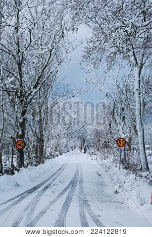 Snowy country road with speed limit road signs and snow covered trees