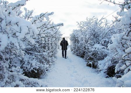Man walks on a narrow footpath in a snow covered landscape