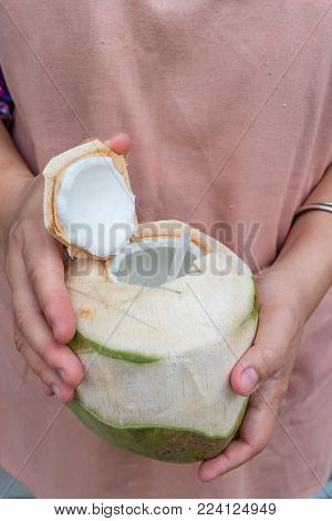 Coconut ready to drink in the hands of Asian women.
