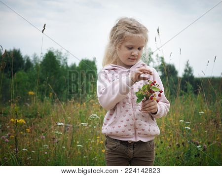 Wonderful little girl with a bouquet of wild strawberries