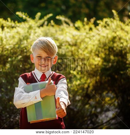 Little Boy Going Back To School. Child With Backpack And Books On First School Day.