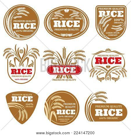 Paddy grain organic rice labels. Healthy food vector logos isolated. Illustration of rice label food collection