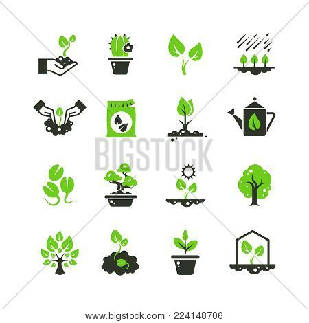 Tree sprout and plants vector icons. Seedling and hand planting pictograms. Seedling and growth tree, gardening and growing illustration