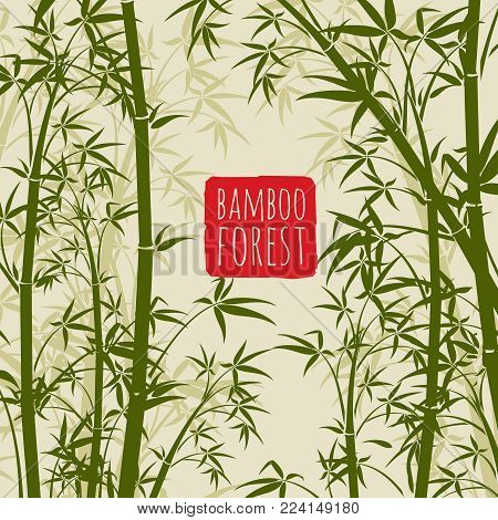 Bamboo rain forest vector wallpaper in japanese and chinese art style. Bamboo chinese pattern nature, japanese forest illustration