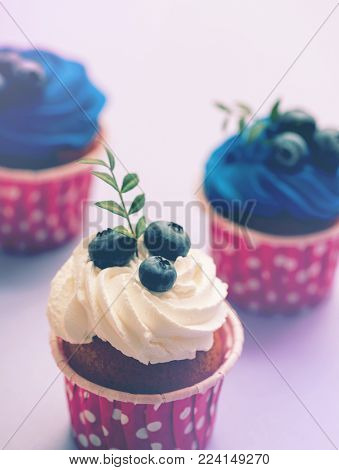 Tasty cupcake with white cream and blueberry. Closeup shot