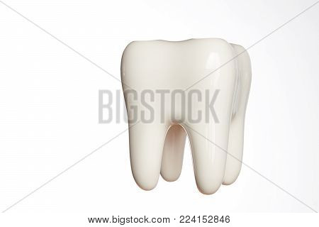Ceramic tooth model isolated on white background with copy space, close-up. Oral dental hygiene. Dental health Concept. Oral Care, teeth restoration. 3d teeth whitening concept