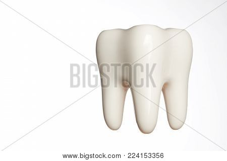 White enamel tooth model isolated on white background with copy space, close-up. Dental health, oral care, teeth restoration and 3d teeth whitening concept poster