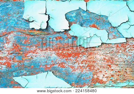 Peeling paint, texture background of turquoise peeling paint on the wooden texture surface, peeling paint closeup. Peeling paint texture background, closeup texture of peeling paint of blue color on the wooden texture surface