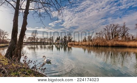 Rural landscape. Lake with trees reeds, rural church and reflection. Swan swimming on water.