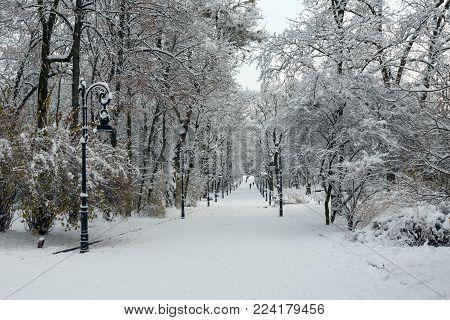 Beautiful overcast morning winter Ivan Franko park in the center of Lviv city, Ukraine. People unrecognizable.