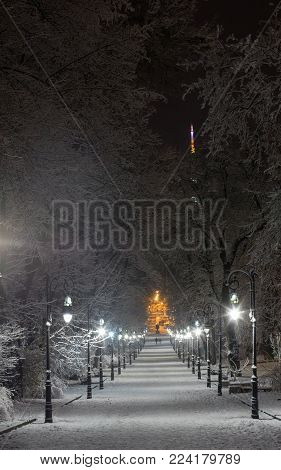 Beautiful night winter Ivan Franko park walkway in the center of Lviv city (Ukraine), and illuminated Vysokyj Zamok (High Castle) TV tower in far. People unrecognizable.