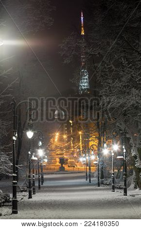 Beautiful night winter Ivan Franko park walkway in the center of Lviv city (Ukraine), and illuminated Vysokyj Zamok (High Castle) TV tower in far. With lamp flare effect.