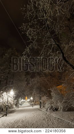 Beautiful night winter Ivan Franko park walkway in the center of Lviv city (Ukraine), and illuminated Vysokyj Zamok (High Castle) TV tower in far.