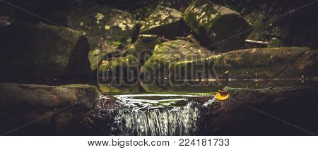 Spring Waterfall With Flowing Water In Natural Pound Among Mossy Stones