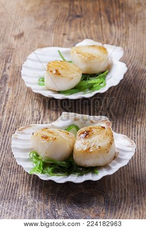 grilled scallops in shells on wood with algae