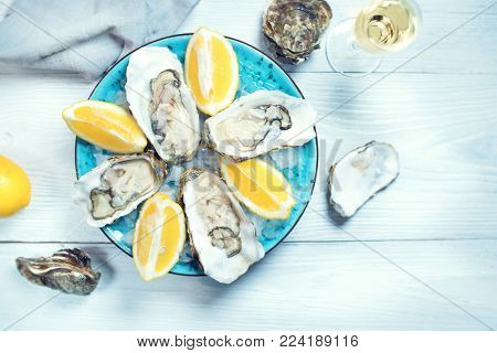 Fresh Oysters close-up on blue plate, served table with oysters, lemon and ice. Table top view. Healthy sea food. Fresh raw Oyster dinner in restaurant. Gourmet food.