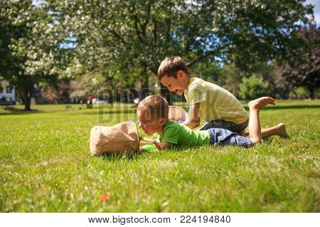 children compete to collect Easter eggs outdoors. boys on Easter Egg Hunt