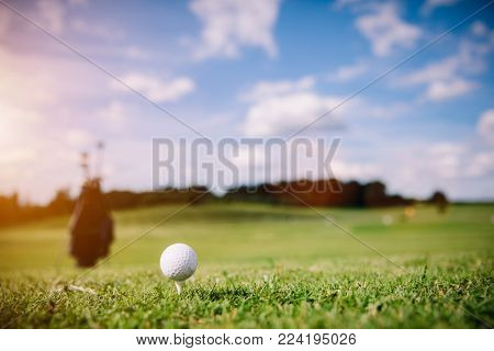 White golf ball on a green grass. Golf course. Summer activities.