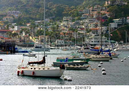 Boats anchor in Avalon bay on Catalina Island California. poster