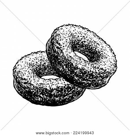 Donuts Sketch Hand Drawn Cakes Retro Pastry Food Sketch Isolated On White Background. Vintage Engraving Doughnut Vector Illustration.