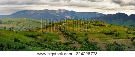 mountainous rural area in springtime. beautiful countryside panorama of rolling hills on a cloudy day