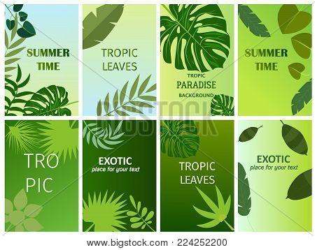 Beautiful vector floral summer jungle exotic background with tropical palm leaves. Perfect spring card web page background surface texture tropical leaves pattern textile.