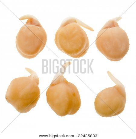 Chick peas isolated