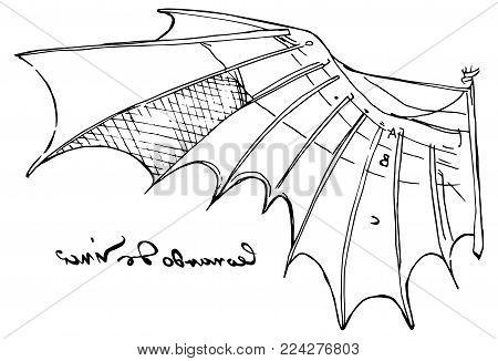 Vector illustration of Leonardo da Vinci wing sketch from the flight code with his left-handed signature