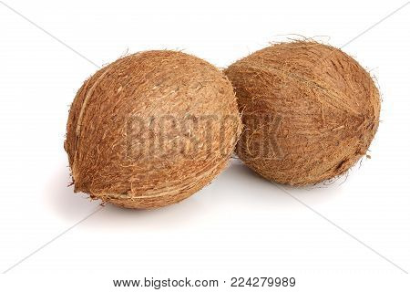 two whole coconut isolated on white background.