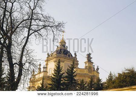 St. George's Cathedral behind trees, Lvov, Ukraine