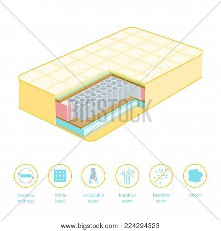 Orthopedic Mattress for Comfortable Rest in Cut of a Basic Texture for Home Isolated on White Background. Vector illustration