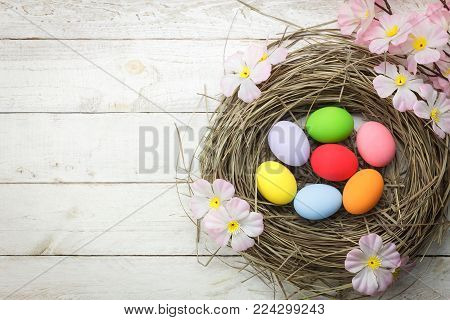 Top view shot of arrangement decoration Happy Easter holiday background concept.Flat lay colorful Easter egg in nest with pink flower.Object on modern rustic white wooden at home office desk studio.