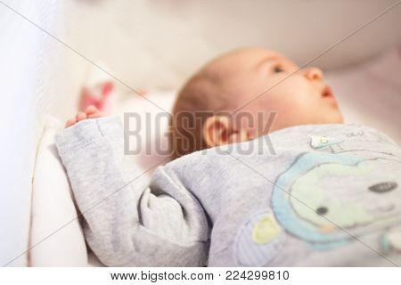 Newborn Baby Lies In The Little Cradle