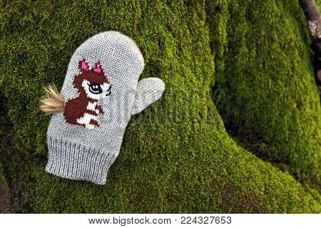 knitted children glove with a squirrel motif lying on mossy tree roots