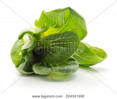 Bok choy (Pak choi) one cabbage with green flowerlike leaves isolated on white background fresh