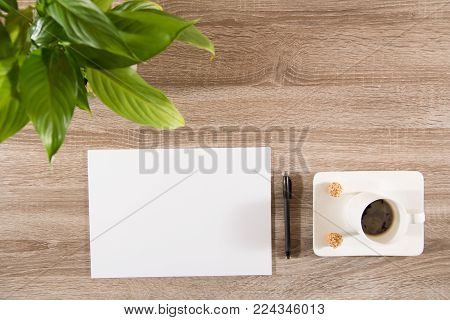 coffee in white cup with two sweet nutty treats on wooden table decorated with plant green leaves and empty white paper and pen ready to take notes